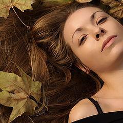 "photo ""Jesenja vila"""