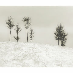 "photo ""A Small December Sonnet"""