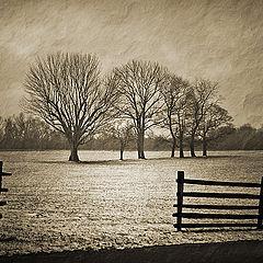"photo ""Princeton battlefield"""