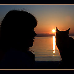 """photo """"Man and cat"""""""