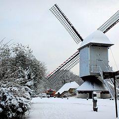 """фото """"wintertime #1"""""""