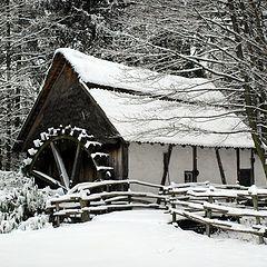 """фото """"wintertime #2"""""""
