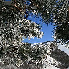 "фото ""Зима на перевале Фуна"""