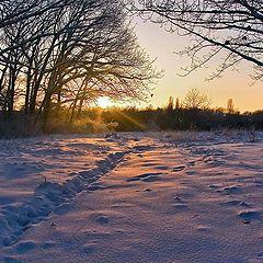 """фото """"Первый закат нового года"""""""