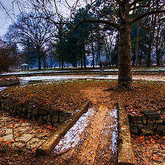 """photo """"Winter in the park"""""""