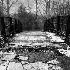 """photo """"The winter bridge"""""""