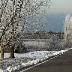 "photo ""frozen way"""