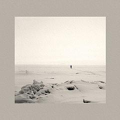 "photo ""Walking Slowly in Snow"""