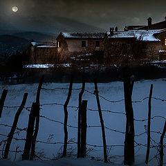 "photo ""Winter moonlight"""