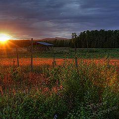 """photo """"Sundown"""""""