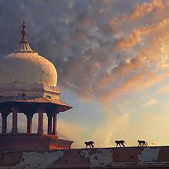 "photo ""Farewell to last of Maharaja"""