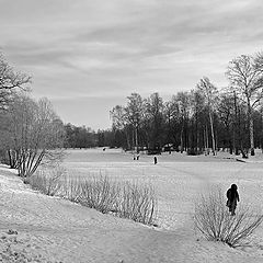 """photo """"Winter Grisaille"""""""