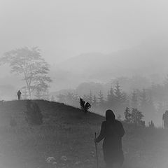 """фото """"Walkers"""""""