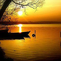 """фото """"Тихая гавань"""""""