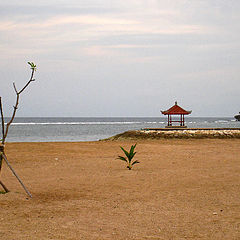 "photo ""Calm shore"""