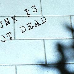 """фото """"PUNK"""""""