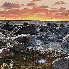 "фотоальбом ""Baltic sea, Kurgal'sky peninsula (winter)"""