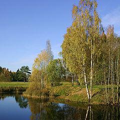 """photo """"Warm autumn"""""""