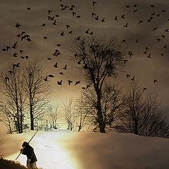 """фото """"snow walker"""""""