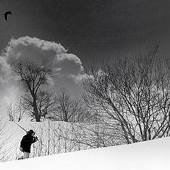"""фото """"snow walker 1"""""""