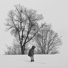 """фото """"snow patrol"""""""