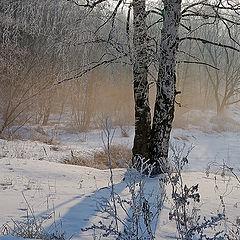 """фото """"Зимний туман."""""""