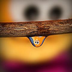 "photo ""макро,капля,вода"""