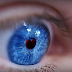 """photo """"макро,любовь,глаз,сердце"""""""