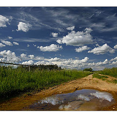 """фото """"Landscape_992"""""""