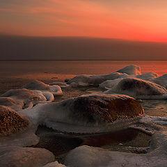 """фото """"Landscape_991"""""""