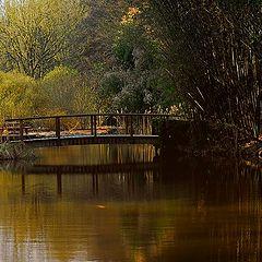 """photo """"the bridge"""""""