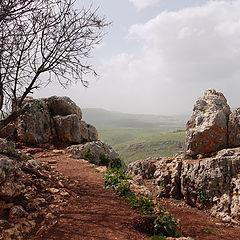 "фото ""Nature reserve Arbel"""