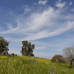 "фото ""Windy sky"""