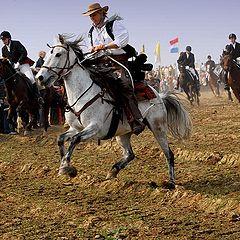 """фото """"horses run"""""""