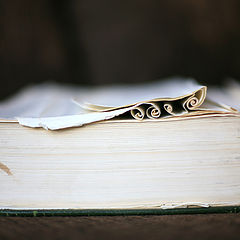 """фото """"Curly Book"""""""