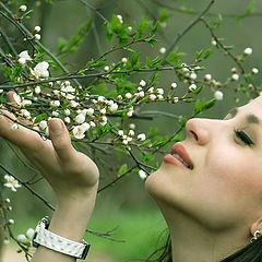 "фото ""Spring Feeling"""