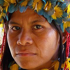 "photo ""Indian Tupi-Guarani"""