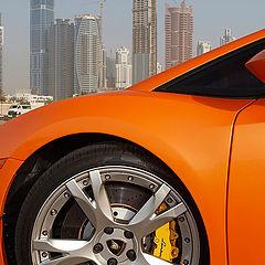 """фото """"Lamborgini Gallardo in UAE"""""""