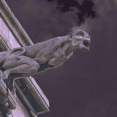 """photo """"Demons Montmartre"""""""