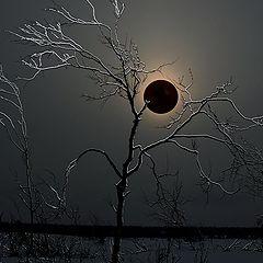 """фото """"мистическое затмение"""""""