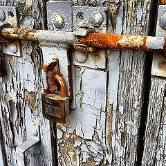"""photo """"Old door"""""""