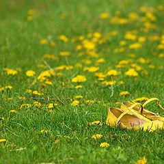 "фото ""Spring mood"""