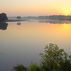 """photo """"Morning on the River Desna"""""""