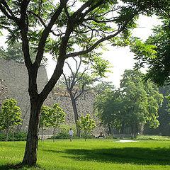 """фото """"Landscape-17"""""""