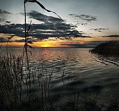 "фото ""Майский закат над заливом"""