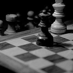 """фото """"шах и мат"""""""