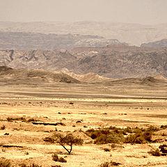 """фото """"jordan*view"""""""