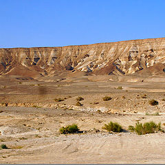 "фото ""israel_desert"""
