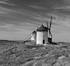 """фото """"La Mancha"""""""