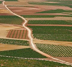 """photo """"Road in Spain"""""""